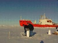 В Арктике начала работать станция Северный полюс-36