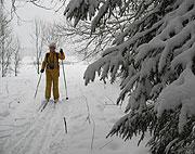 Лыжный поход по подмосковью на выходной день Калистово - Морозки