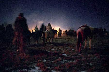 Ночное лошади и кони выпас лошадей